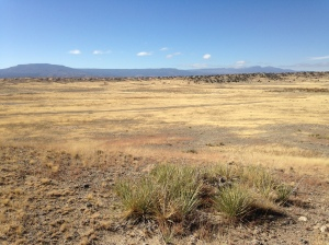 Photo from River Watch Ranch - View from Mesa