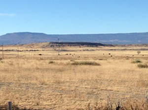 River Watch Ranch - South view to New Mexico mesas.