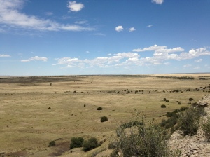 River Watch Ranch - East view from Mesa